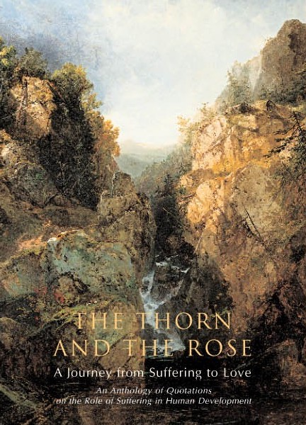 Thorn and Rose